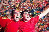 Football Supporters Watching a Match — Stock Photo