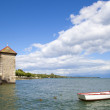 Rowboat in the Rolle Castle jetty in Switzerland — Stock Photo #6639439