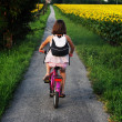Young girl outdoors on bicycles — Stock Photo #24681615