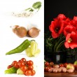 Collection of fresh vegetables with flower — Stock Photo