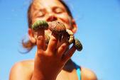 Pequeño retrato de la muchacha con la cáscara del erizo de mar — Foto de Stock