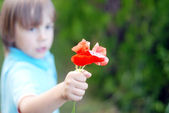 Little boy with flowers — Stock Photo