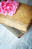 Rose eski kitaplar eski mavi ahşap tablo — Stok fotoğraf