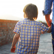 Man with son walking and holding hands — Stock Photo #38687143