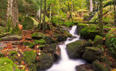 Gertelsbacher Waterfalls in autumn, Black Forest, Germany — Stock Photo