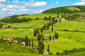 Tuscany road with cypress trees, Val d'Orcia, Italy — Stock Photo