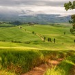 Tuscany hilly landscape near Pienza, Italy — Stock Photo