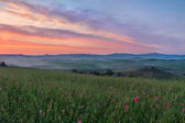 Val d'Orcia after sunrise with violet sky, Tuscany, Italy — Stock Photo