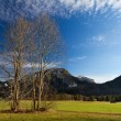 Bavarian Alps with Neuschwanstein Castle, Germany — Stock Photo