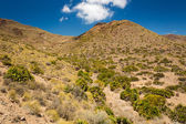 Cabo de Gata National Park, Andalusia, Spain — Stock Photo