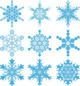 Snowflake vectors — Stock Vector