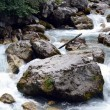 Mountain river -  
