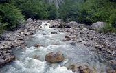 山の川 — ストック写真