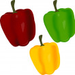 Sweet pepper — Image vectorielle