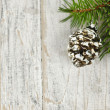 Christmas background with ornaments on branch — Foto de Stock