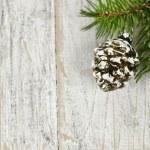 Weihnachten Hintergrund mit Ornamenten auf Zweig — Stockfoto