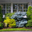 Garden in front of house — Stock Photo