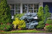 Jardín frente a casa — Foto de Stock