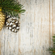 Christmas background with ornaments on branch — Stock fotografie