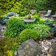 Lush landscaped garden — Stock Photo