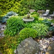 Lush landscaped garden - Stock Photo