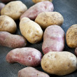 raw potatoes — Stock Photo