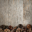 Stock Photo: Wood background with pine cones