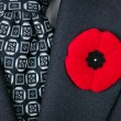 Remembrance Day poppy on suit - Stock Photo