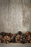 Wood background with pine cones — Stock Photo