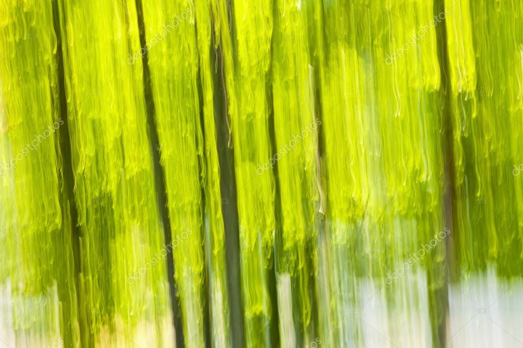 Abstract background of green forest produced by in-camera motion blur — Stock Photo #16852953