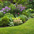 Garden and flowers — Stockfoto #16942107