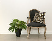 Antique armchair and plant near wall — Stock Photo