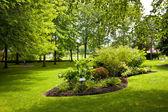 Jardín en el parque — Foto de Stock