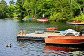 Cottage lake with diving platform and docks — Stock Photo