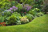 Trädgård och blommor — Stockfoto