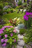 Jardim e flores — Foto Stock