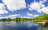 Lago da casa de campo com mergulho plataforma e doca — Fotografia Stock