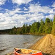 Stock Photo: Red canoe on lake shore