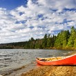Red canoe on lake shore — Stock Photo #27798327