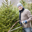 Stock Photo: Man cutting Christmas tree