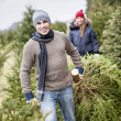 Family with Christmas tree on a farm — Stockfoto