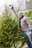 Man with Christmas tree on a farm — Stock Photo