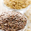 Stock Photo: Brown and golden flax seed