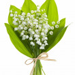 Lily-of-the-valley flowers on white — Stock Photo