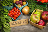 Organic market fruits and vegetables — Stok fotoğraf