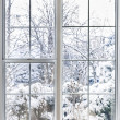 Winter view through window — 图库照片