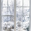 Winter view through window — Stok fotoğraf