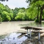 Flood in park — Stock Photo