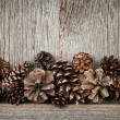 Rustic wood with pine cones — Stock Photo