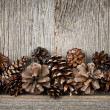Rustic wood with pine cones — Stock Photo #27851139